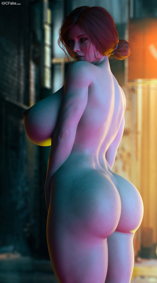 The Witcher (video game) Celeb Breast