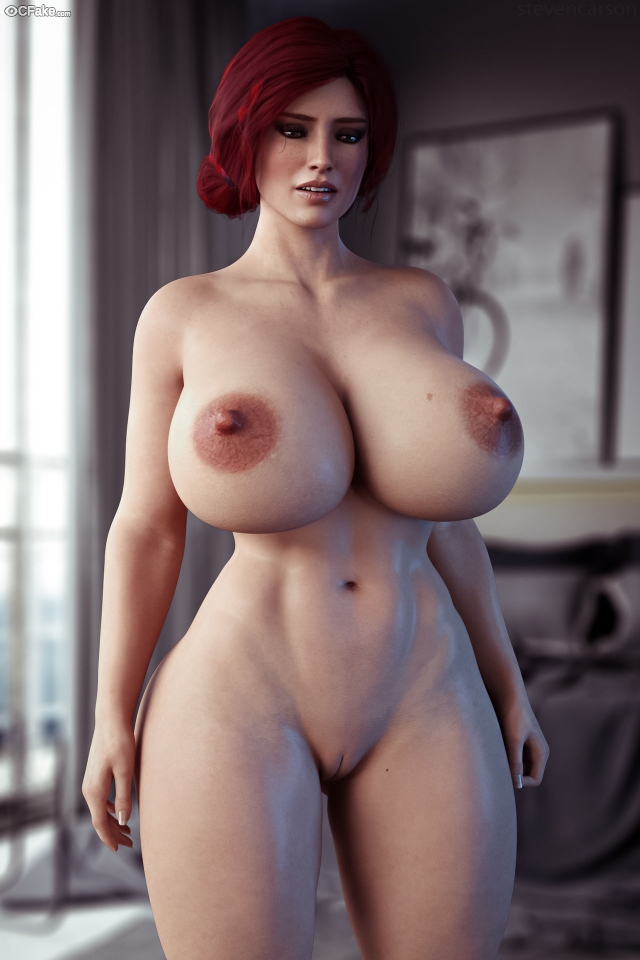 The Witcher (video game) Pussy sex